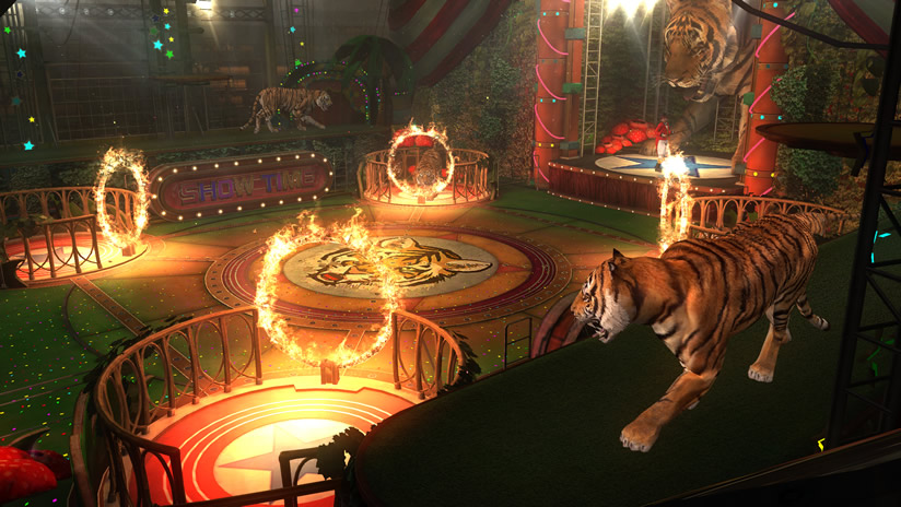 Dead or alive 5 official site - Show me a picture of the tiger ...